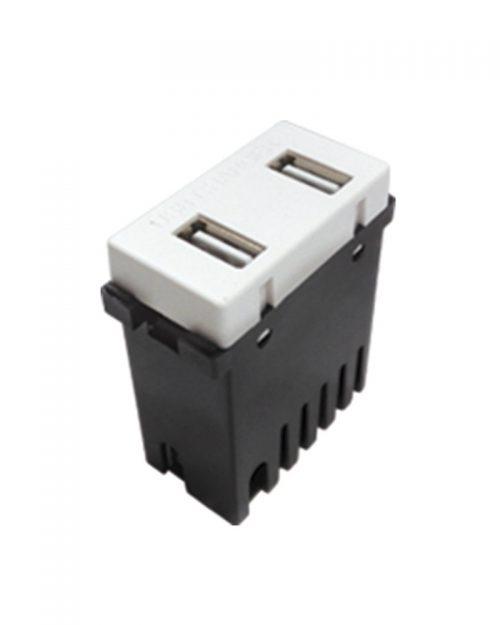 MODULO 2 PUERTOS USB 2A BLANCO | ROYER 100